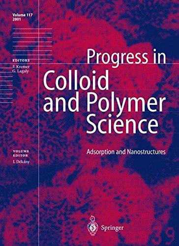 Adsorption and Nanostructures (Progress in Colloid and Polymer Science)