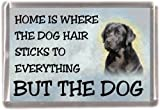 "Black Labrador Retriever Fridge Magnet ""HOME IS WHERE THE DOG HAIR STICKS TO EVERYTHING BUT THE DOG"""