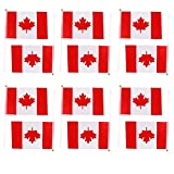 nalmatoionme Hand winkt Kanada Canadian National Flaggen