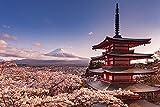Mount Fuji Blossom Poster (91,5cm x 61cm) + Ü-Poster