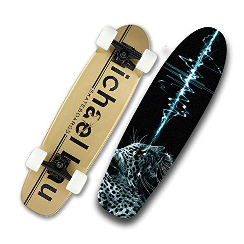 skateboarding-cruising-professional-skateboarder-skateboard-wheel-adult-skate-highway-travel-skatebo