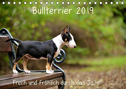 Bullterrier 2019 Frech und fröhlich durch das Jahr (Tischkalender 2019 DIN A5 quer): Ein toller Kalender für die Freunde und Liebhaber der Hunderasse ... (Monatskalender, 14 Seiten ) (CALVENDO Tiere) (Und Liebhaber Freunde)