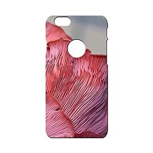 G-STAR Designer Printed Back case cover for Apple Iphone 6 (LOGO) - G1452