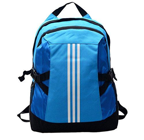 Ruanlei @ tela casual zaini viaggio/ laptop backpack / multifunzione zaino business/ backpack resistente all'acquail multi-purpose massa esterna doppia corsa borsa a tracolla, blu