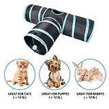 Prosper Pet Cat Tunnel chenci- klappbar 3Wege Play Spielzeug–Tube Fun für Kaninchen, Kätzchen, und Hunde - 2