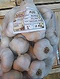 Ajos blancos de Valladolid y Segovia - Saco 5 kg