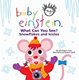 Baby Einstein Baby Learning Books Review and Comparison