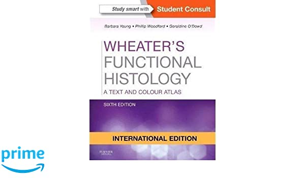 Buy wheaters functional histology a text and colour atlas book buy wheaters functional histology a text and colour atlas book online at low prices in india wheaters functional histology a text and colour atlas fandeluxe Choice Image
