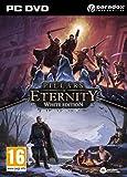 Pillars Of Eternity - White Edition