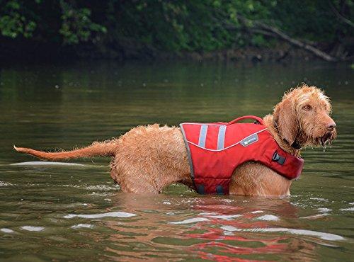 Ruffwear 45101-615M K9 Float Coat Schwimmweste für Hunde, M, rot -
