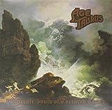 Age of Taurus: Desperate Souls of Tortured Times [Vinyl LP] (Vinyl)