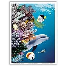 DolphinÕs Reef - GrayÕs Hawaiian Spinner Dolphin (Nai_a) - Original Color Painting by Mark MacKay - Bon Art Print hawaien