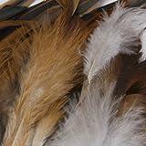 SODIAL(R) Natuerlich Dekoration Hahn Hahn Feder-Idee fuer Kostueme, Huete, Zuhause,Dekor,usw. -