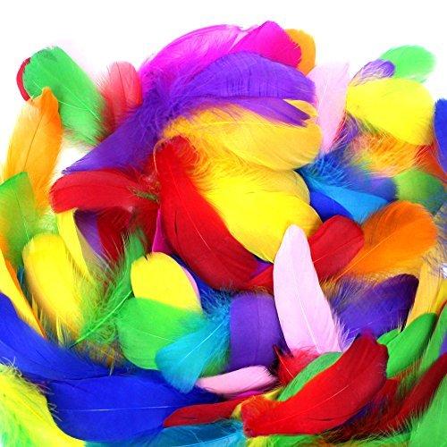 Maske Kostüm Diy (Coceca 500 Stück Bunte Federn, Mehrfarbig Gans Federn zum Basteln - Idee für Masken, Kostüme, Hüte,)