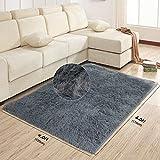 AziPro Tappeto Soggiorno Shaggy Moderno Tappeti Porpora Soft Touch Spessore Antiscivolo Carpet (Grigio, 4X 6ft (120x 170cm))