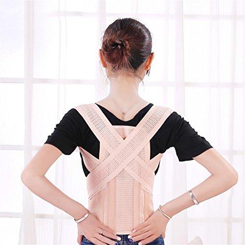 G&M Korrigierende Schulterstütze auf der Rückseite der Wirbelsäule, Erwachsene Korsett Taille zu korrigieren , skin color , (Korsetts Erwachsenen)
