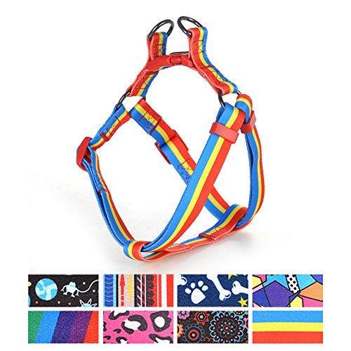 ihoming Pet Weiche strapazierfähige Geschirr für Hund Walking Leine Control Fit Small Mitte Hunde, Passendes Halsband & Leine Separat erhältlich, S 14