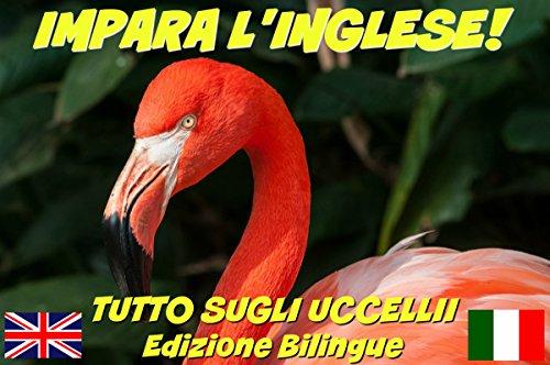 IMPARA L'INGLESE!  TUTTO SUGLI UCCELLII (CON AUDIO): Edizione Bilingue (Inglese/Italiano) (Impara l'inglese! Tutto su... Vol. 1)