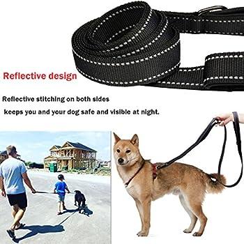 Beiyoyo Große Hundeleine, Doppelgriffe Reflektierende Keine Pull Heavy Duty Starke Nylon Hundeleine Mit Haustier Faltbare Reise Schüssel (Schwarz) 4