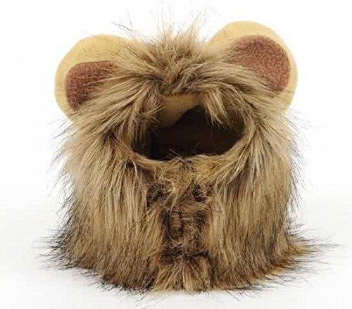 Pride Kings Löwenkostüm für Kleine Hunde/Katzen Löwenmähne, Katzenkostüm, Hundekostüm | ehr Unterhaltsam und perfekt für außergewöhnliche Fotos mit deinem Vierbeiner |mit Ohren | Grösse S/M