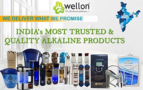 Wellon Plastic pH Test Liquid with Colour Chart (Black, 2.5 inches)