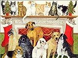 Posterlounge Leinwandbild 130 x 100 cm: Hunde und Katzen von Pat Scott/Bridgeman Images - fertiges Wandbild, Bild auf Keilrahmen, Fertigbild auf echter Leinwand, Leinwanddruck