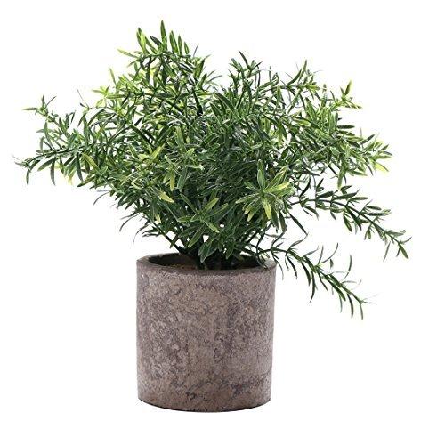 Mini Fake Topfpflanzen Dekorative lebensecht Blumen Grün Pflanzen Round Pot Grün NEW01 ()