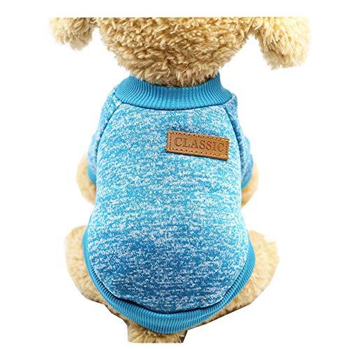ZTMN Haustier Katze Hund Kleidung Kostüm Strick Kätzchen Puppy Jumper Pullover Kostüme Hund Sweatshirts, Adorable tragen stilvolle gemütliche Halloween, Weihnachten (Farbe: Blau, Größe: XXL)