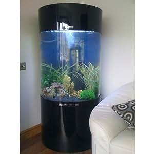 aquarium en forme de colonne cylindrique animalerie. Black Bedroom Furniture Sets. Home Design Ideas
