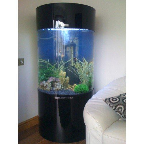 Spalte Zylinder Aquarium Fisch Tank