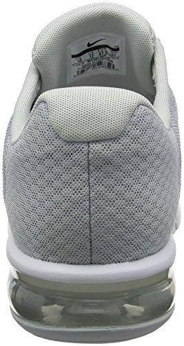 Nike Herren Air Max Sequent 2 Laufschuhe Grau (Platine Pur/gris Loup/platine Métallisé/blanc)