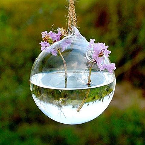Bluelover Forma de la bola colgante cristal florero plantas hidropónicas flor envase