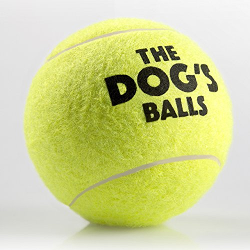 The-Dogs-Balls-6-Dog-Tennis-Balls-Premium-Strong-Yellow-Dog-Ball-Dog-Toy-for-Training-Play-Exercise-Fetch-Tough-Dog-Balls-for-Chuckit-Launchers-Bouncy-Tennis-Ball-for-Your-Puppy-too-No-Dog-Toy-Squeake