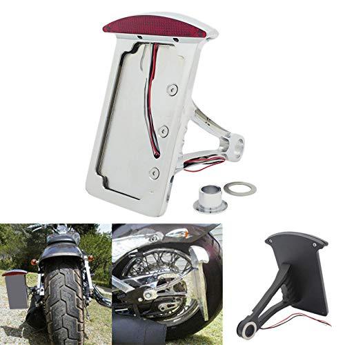 Semoic 12 V Motorrad Vertikale Seite Kennzeichen Halter Halterung RüCklicht Achse für Iron Chopper Benutzer Definierte (Silber)