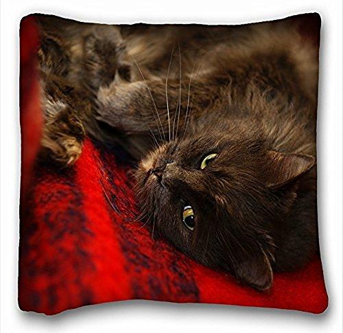 Decorativa Quadrata, animali cat muzzle S Sleep Fuzzy Cuscino 18x 18in due lati
