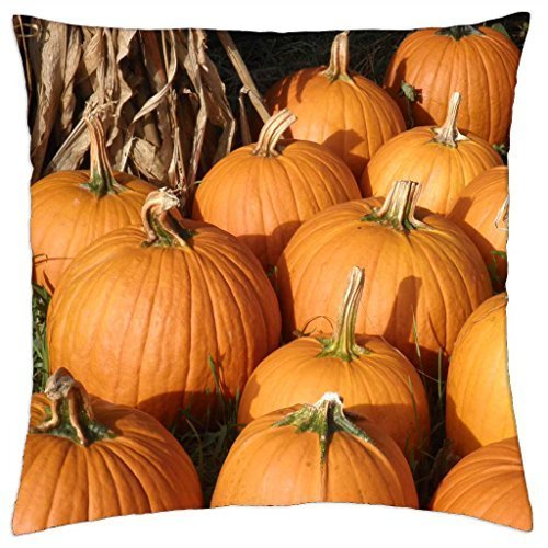 plenty-o-pumpkins-throw-pillow-cover-case-18-x-18