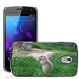 Del estilo caliente celular sólo teléfono Carcasa PC // M00138990 perro comiendo bebé faunístico pradera // Samsung Galaxy Nexus GT - i9250