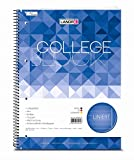 LANDRE 100050571 Collegeblock College 10er Pack A4 80 Blatt liniert weißer Rand rechts 70 g/m² gelocht Schreibblock Notizblock Briefblock Schulblock