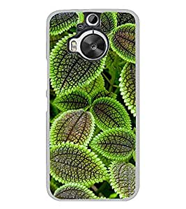 ifasho Designer Back Case Cover for HTC One M9 Plus :: HTC One M9+ :: HTC One M9+ Supreme Camera (Leaves Design Sukabumi Indonesia Narasaraopet)