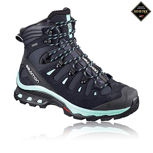 Salomon Damen Quest 4d 3 GTX W Trekking-& Wanderstiefel, Grau (Graphite/Night Sky/Beach Glass 000), 40 EU