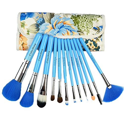 Ensemble de 12 professionnel pinceau maquillage / joli pinceaux, bleu
