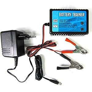 batterietrainer ladeger t erhaltungsger t 12v 10 250ah kfz. Black Bedroom Furniture Sets. Home Design Ideas