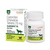 #3: CARODYL 75 MG ECO Pack_PET ADDA_(Bottle of 30 Tablets)