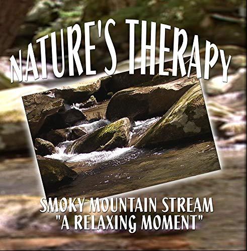 Nature's Therapy- Smoky Mountain Stream