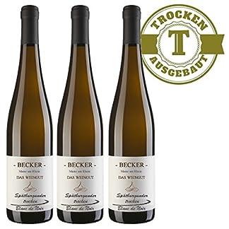 Weingut-Marco-Becker-Rheinhessen-Sptburgunder-Blanc-de-Noir-2014-trocken-3-x-075l-VERSANDKOSTENFREI