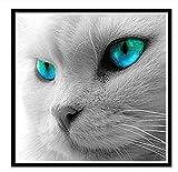 Lovefyl DIY 5D Diamante Pittura Pieno Circolare Diamante Gatto con Gli Occhiali Blu Diamante Ricamo Camera da Letto Parete Arredamento Kit di Pittura Diamante30X30Cm