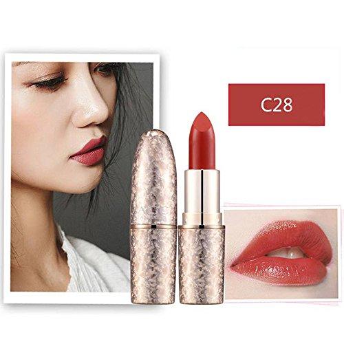 ❤️Matt Lippenstift,Sisit Wasserdicht Lange andauernd Vampir Stil Make-up Lippenstift Lipgloss (Mehrfarbig H)