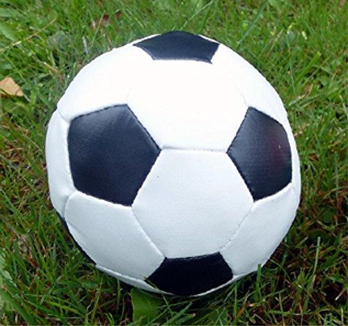 Softball (Fußball) als Spielzeug für Hunde und Katzen. Ø 10cm
