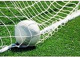 Filet De But, But De Football pour Football, Filet De Remplacement pour Sports(24X8FT)