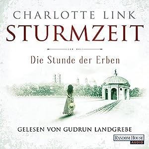 Die Stunde der Erben: Sturmzeit-Trilogie 3